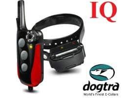 Dogtra IQ Halsband Collar