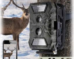 acorn guard wildkamera fotofalle trail cam AG-680M new-done